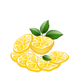 Half and Sliced of Lemon on White Background vector image