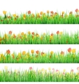 Green grass with flowers isolated EPS 10 vector image