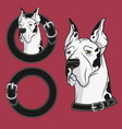 a set color drawing dog in collar vector image vector image