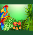 Background with tropical leaves and parrots and