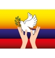 colombian peace dove with olive branch vector image vector image