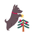 funny dog decorated christmas tree symbol xmas vector image vector image