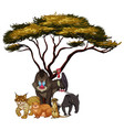 isolated picture wild animals under tree