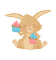 lovely brown bunny with two tasty cupcakes cute vector image