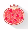 pomegranate part flat design vector image vector image