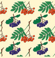 seamless pattern with red and black rowan berries vector image