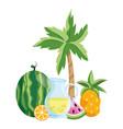 delicious fresh juice cartoon vector image