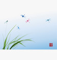dragonflies and leaves of grass on blue sky vector image vector image
