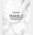 luxury marble texture background stone vector image