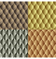Seamles dragon skin pattern vector image vector image