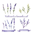 set watercolor lavender and ribbons vector image vector image