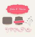 collection of pink wedding decoration elements vector image