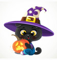 cute cartoon baby black cat with halloween vector image vector image