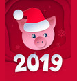 postcard with cute new year pig vector image