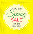 spring sale banner spring sale phrase on white vector image vector image