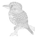 entangle stylized kookaburra bird vector image