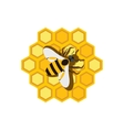 Honeycomb and bee flat icon vector image vector image