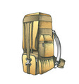 tourist travel backpack luggage color vector image vector image