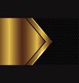 abstract gold arrow blank space grey circle mesh vector image vector image