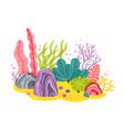 background with ocean bottom corals reefs vector image vector image