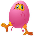cartoon chick hatching from an egg vector image vector image