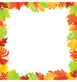 Colorful Autumn Leafs Frame vector image