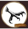 Eagle claw vector image