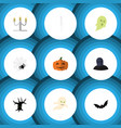 flat icon halloween set of tomb spinner skeleton vector image vector image