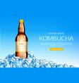kombucha bottle on ice cubes heap mockup banner vector image vector image