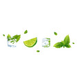 set of lime ice cube and mint vector image