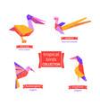 set tropical bird icons vector image vector image