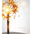 Autumn tree with beautiful leaves vector image vector image