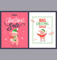big and final christmas sale poster pig vector image vector image