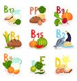 flat set of products containing different vector image
