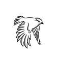 logo design hummingbird technology vector image vector image
