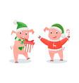new year piglets in santa hats winter holidays vector image vector image
