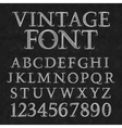 Vintage patterned letters and numbers Font in vector image vector image
