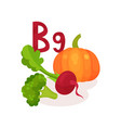 products containing vitamin b9 folic acid fresh vector image