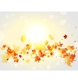 Autumnal background with maple leaves and lights vector image vector image