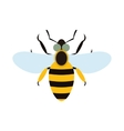 Bee flat icon vector image