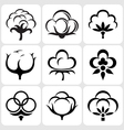 cotton icons set vector image vector image