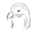 eagle drawn by hand contour of a bird vector image
