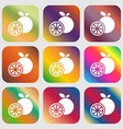 orange icon sign Nine buttons with bright vector image vector image