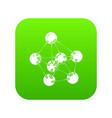 phenol icon green vector image vector image