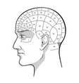 phrenology retro pseudoscience poster or print vector image