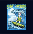 surf rabbits vector image