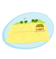 thai rice field vector image vector image