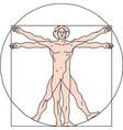 vitruvian man eps 10 vector image vector image
