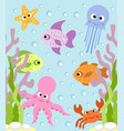 background card with sea animals vector image vector image