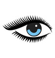 beautiful woman blue eye vector image vector image